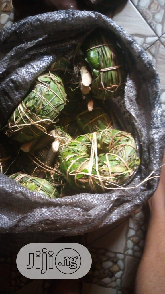 Aju Mbaise   Vitamins & Supplements for sale in Ifako-Ijaiye, Lagos State, Nigeria