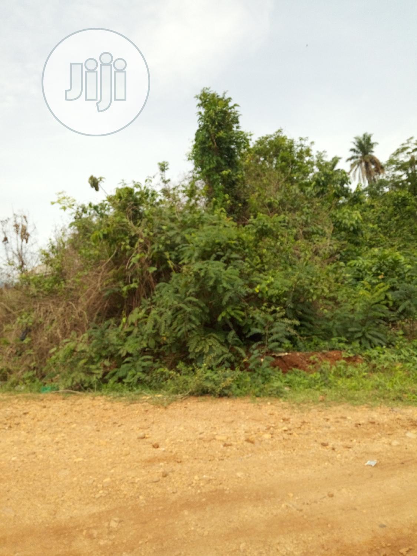50acres Of Land @ Operinde-akinwaare Area Of Ido IB, Oyo State