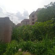 Full Plot of Land at Osina | Land & Plots For Sale for sale in Enugu State, Enugu