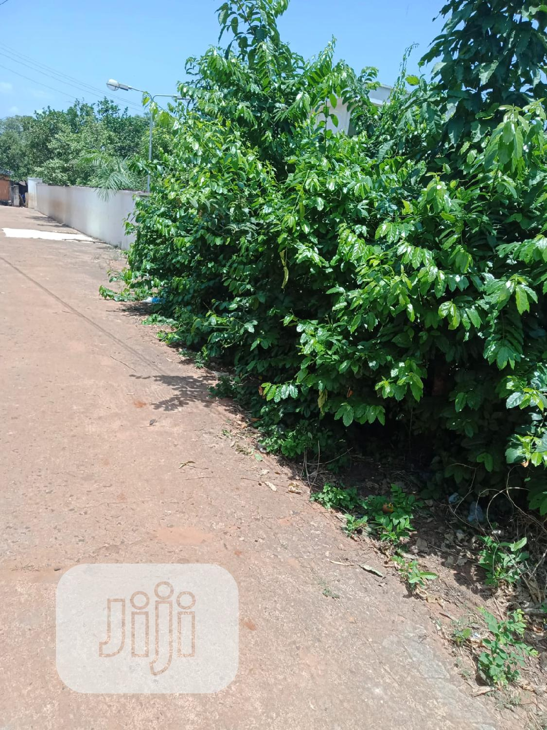 At Amawbia Awka 2 Plots of Land for Sale Melekh Olam Consultium