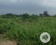 650m2-land For Sale At BUCKNOR ESTATE, Isolo. TITLE: Cofo. | Land & Plots For Sale for sale in Lagos State, Isolo