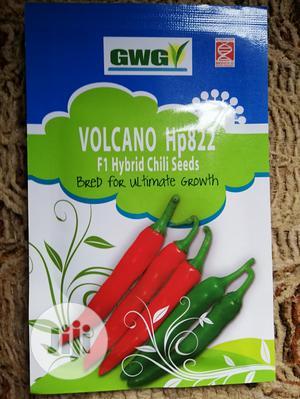 Hot Pepper Volcano Hp822   Feeds, Supplements & Seeds for sale in Ogun State, Ado-Odo/Ota