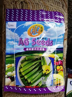 F1 655 Five Star Hybrid Okra | Feeds, Supplements & Seeds for sale in Ogun State, Ado-Odo/Ota