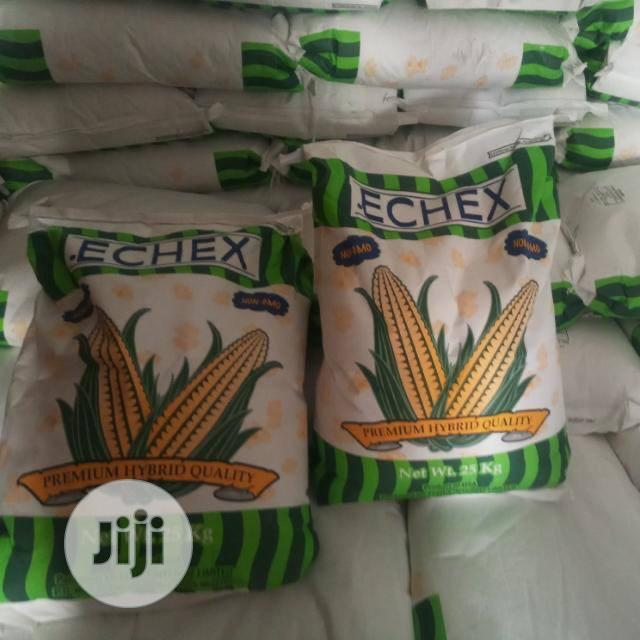 POPCORN Maize | Feeds, Supplements & Seeds for sale in Isolo, Lagos State, Nigeria