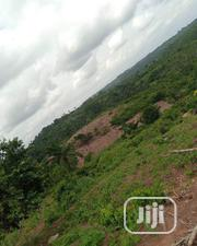 Lands for Sale in Ozubulu Anambra State | Land & Plots For Sale for sale in Anambra State, Nnewi