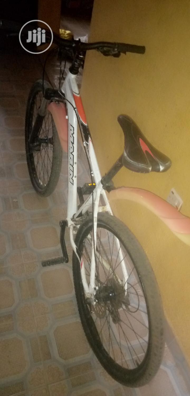 Archive: Marin Bikes California Bicycle