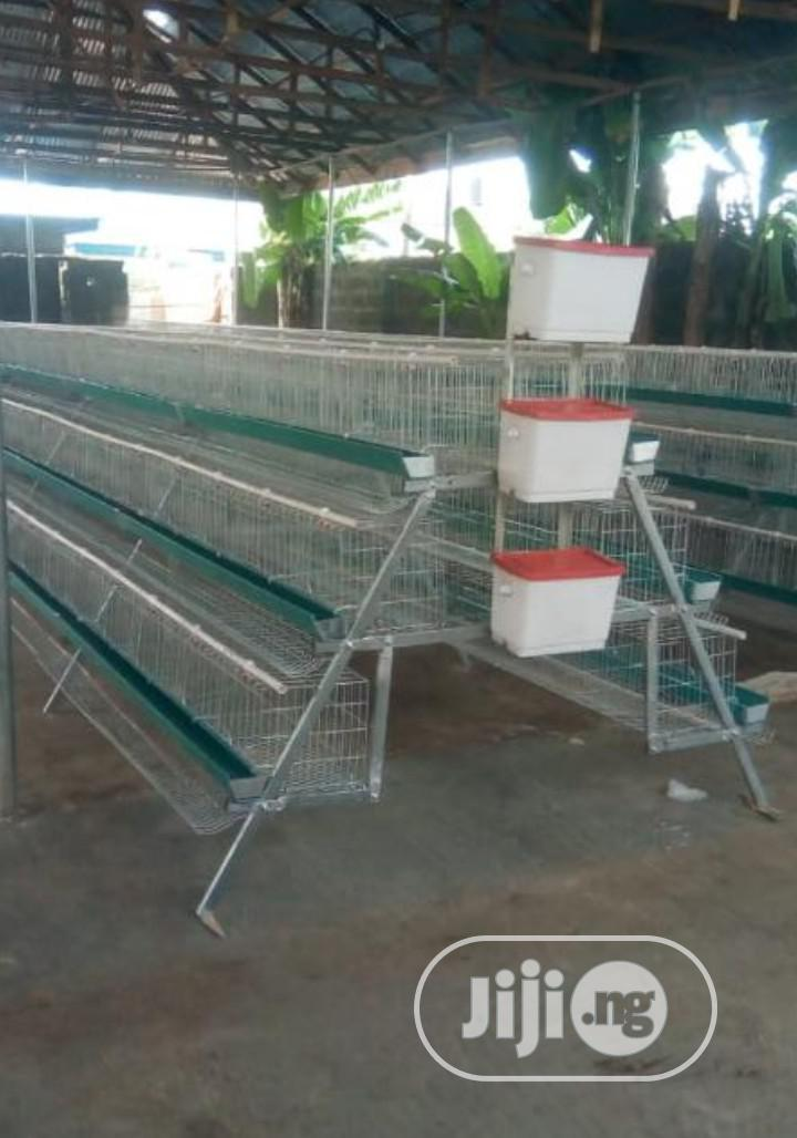 Imported Cages