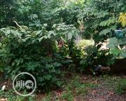 Urgent Sale   Land & Plots For Sale for sale in Cross River State, Akpabuyo
