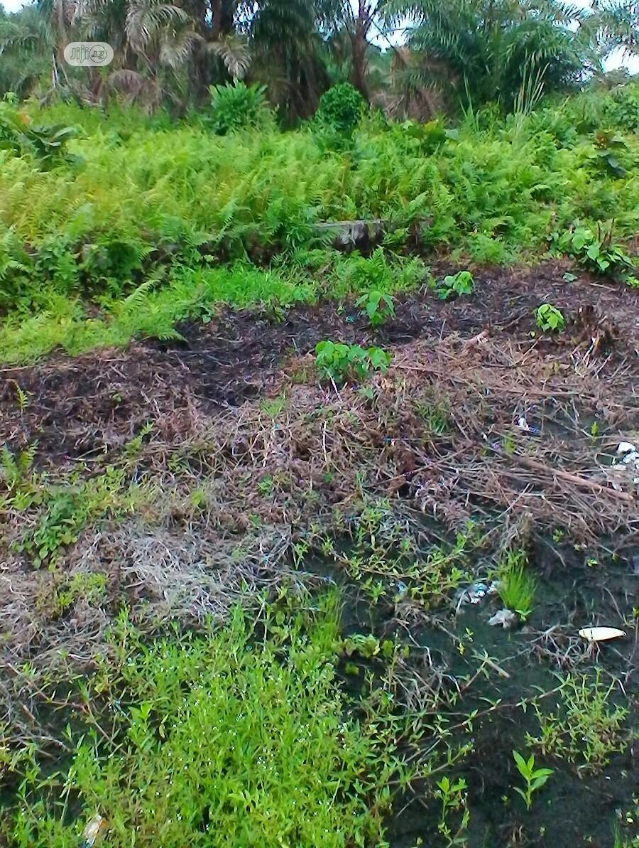 Plot of Land for Sale at Cele Imede, Awoyaya After Ajah.