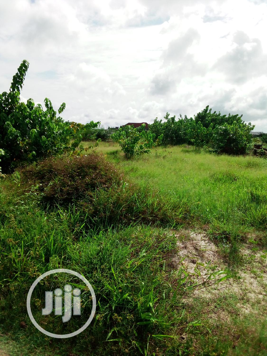 This Lands Is for Sale at Ibjue Lekki Inside Aroromi | Land & Plots For Sale for sale in Ibeju, Lagos State, Nigeria