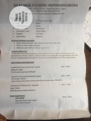 Social Media Manager | Advertising & Marketing CVs for sale in Lagos State, Apapa