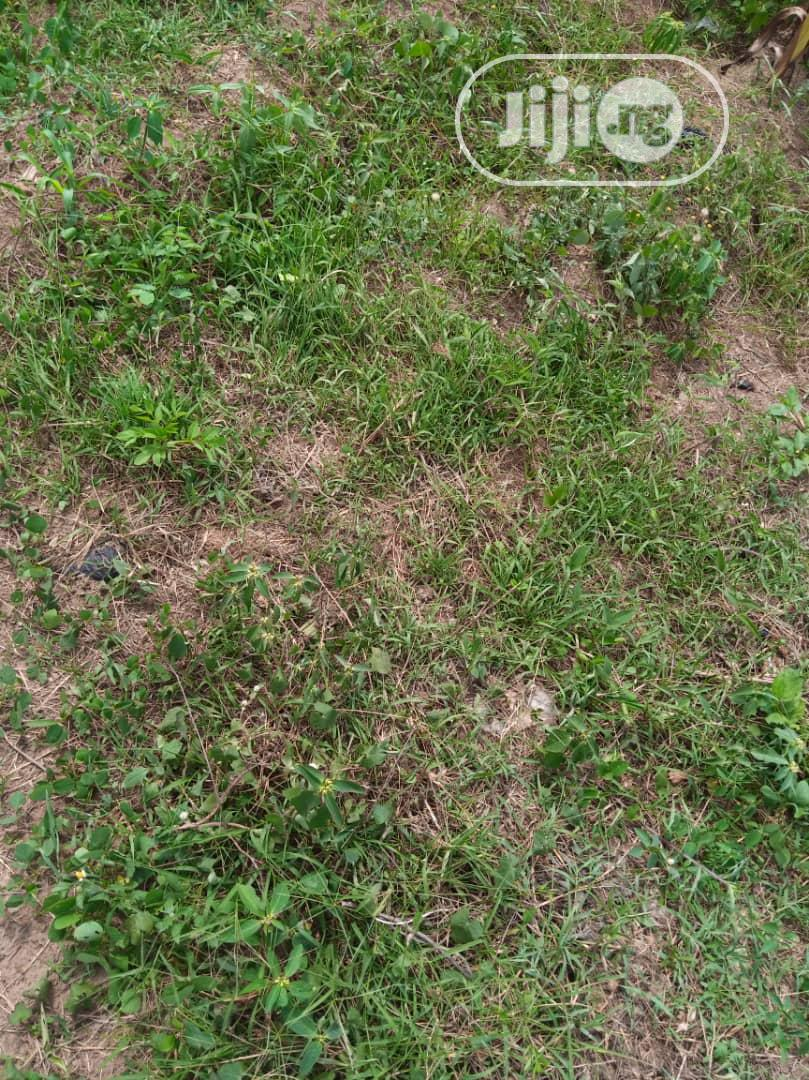 Plot of Land | Land & Plots For Sale for sale in Akure, Ondo State, Nigeria
