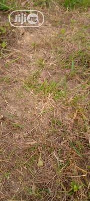 Dry Full Plot of Land | Land & Plots For Sale for sale in Lagos State, Ikorodu