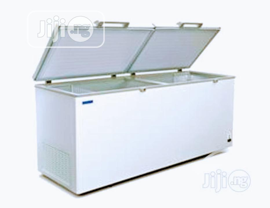 Skyrun BD550W Chest Freezer Using By Super Market Fast Making