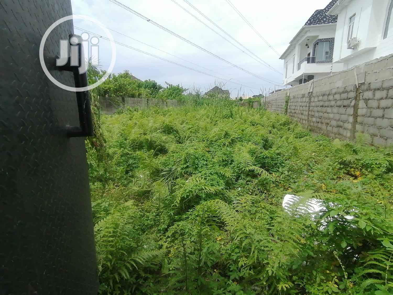 Half Plot for Sale at Thomas Estate Ajah | Land & Plots For Sale for sale in Ajah, Lagos State, Nigeria