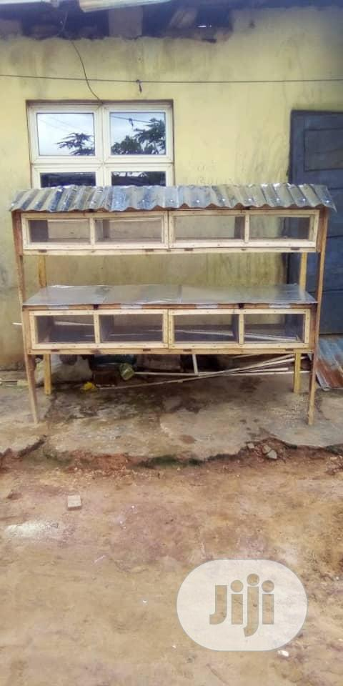 Parrot Cage And Rabbit Cage And Parrot For Sale   Pet's Accessories for sale in Ikorodu, Lagos State, Nigeria
