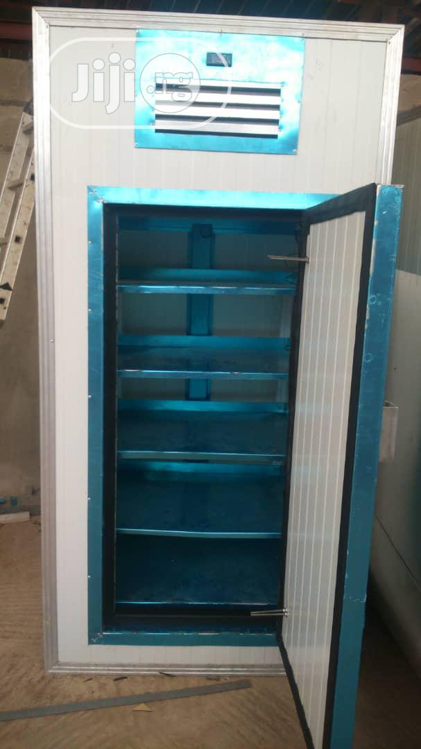 BLAST CHILLER (Mini Size) Energy Efficient For Fruits And Vegetables