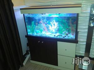Aquarium Available | Fish for sale in Lagos State, Apapa