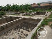 For SALE: Fish Ponds With Poultry on One(1) Acre of Land at Ikola | Land & Plots For Sale for sale in Lagos State, Ipaja