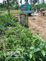 An Acre of Land at Mogaji-Akingbile Axis, Close to IITA Fence IB | Land & Plots For Sale for sale in Oyo State, Ibadan