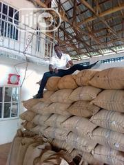 Nigeria Cocoa Bean | Feeds, Supplements & Seeds for sale in Cross River State, Ikom