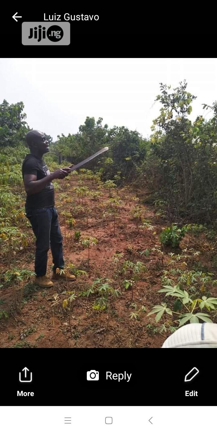 Deed of Assignment and Receipt   Land & Plots For Sale for sale in Obafemi-Owode, Ogun State, Nigeria