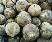 Gorontula The Magical Seed | Sexual Wellness for sale in Lagos State, Shomolu