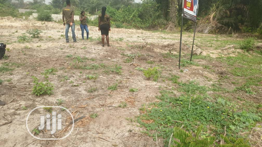 Archive: Land for Sale