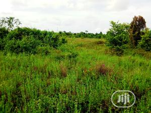This Land Is For Sale With Deed of Assignments and Family Receipt Dry Lands | Land & Plots For Sale for sale in Lagos State, Ibeju