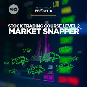 Stock Trading Course Level 2: Market Snapper By Adam Khoo | Classes & Courses for sale in Lagos State, Ikeja