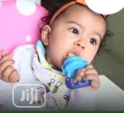 The Fruit Pacifier | Baby & Child Care for sale in Abuja (FCT) State, Kubwa