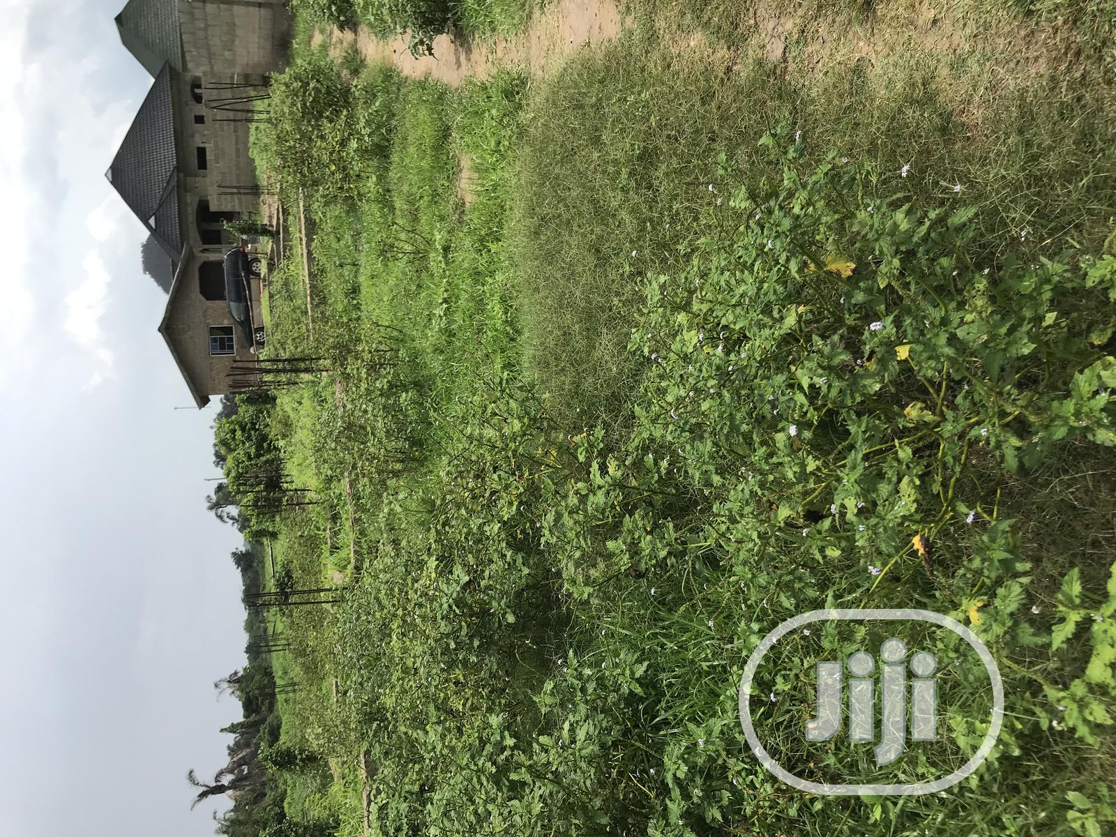 Plots of Land for Sale at Opic Isheri Extension | Land & Plots For Sale for sale in Ado-Odo/Ota, Ogun State, Nigeria
