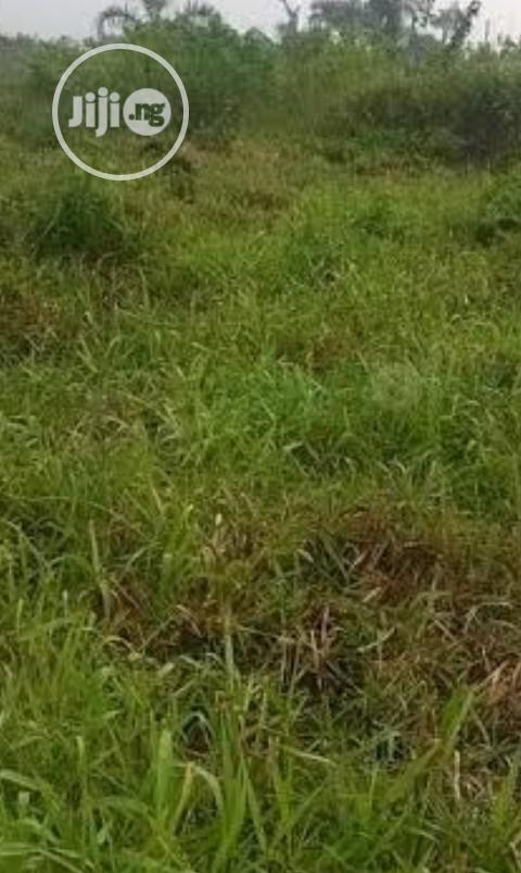 Archive: KARSANA SOUTH ,20 Hectares For Sale