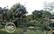 A Functional Integrated Farm With A 2 Modern 6 Bedroom Bungalow | Commercial Property For Sale for sale in Imo State, Owerri