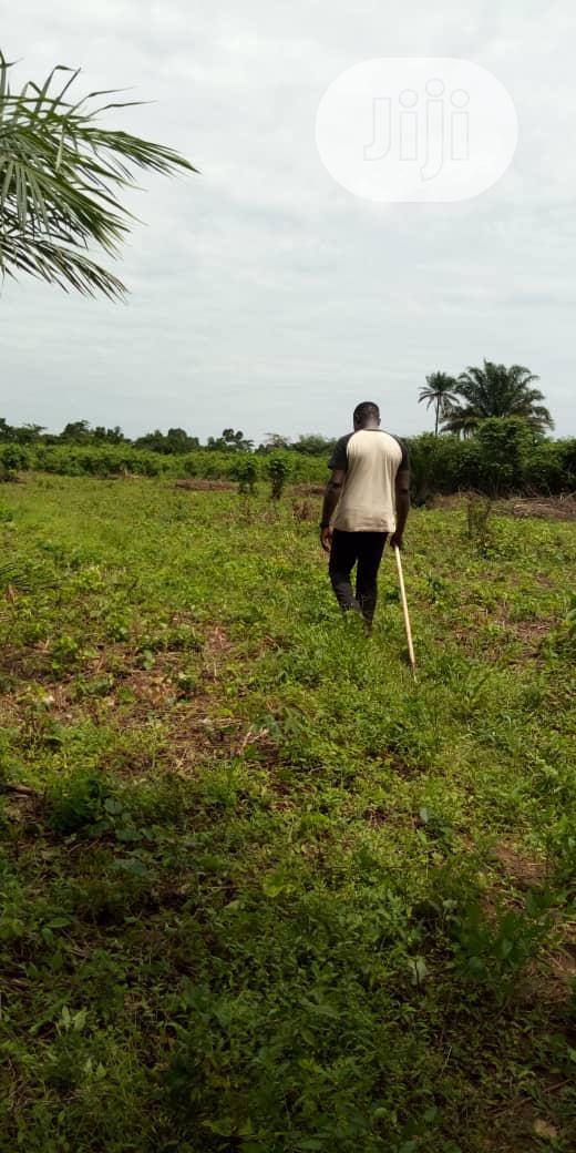 Acres Of Land For Sale.