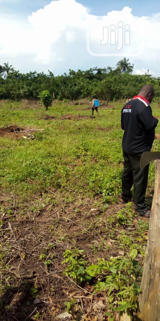 Acres Of Land For Sale. | Land & Plots For Sale for sale in Obafemi-Owode, Ogun State, Nigeria
