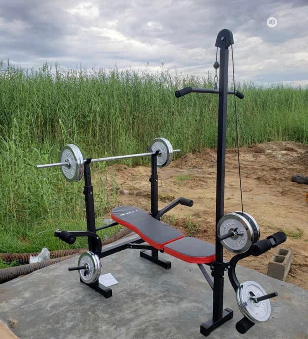 Archive: Weight Bench With 50kg Bar Bell And Pull Up Bar
