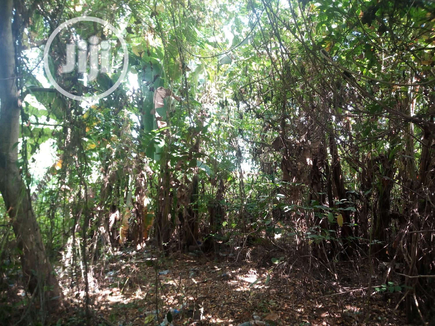 Arces/ Hecters Of Land For Sale | Land & Plots For Sale for sale in Odeda, Ogun State, Nigeria
