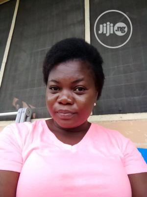 Childcare & Babysitting CV   Housekeeping & Cleaning CVs for sale in Delta State, Ethiope West