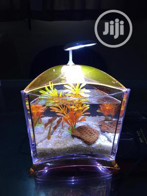 Mini Table Triangle Aquarium   Fish for sale in Lagos State, Alimosho