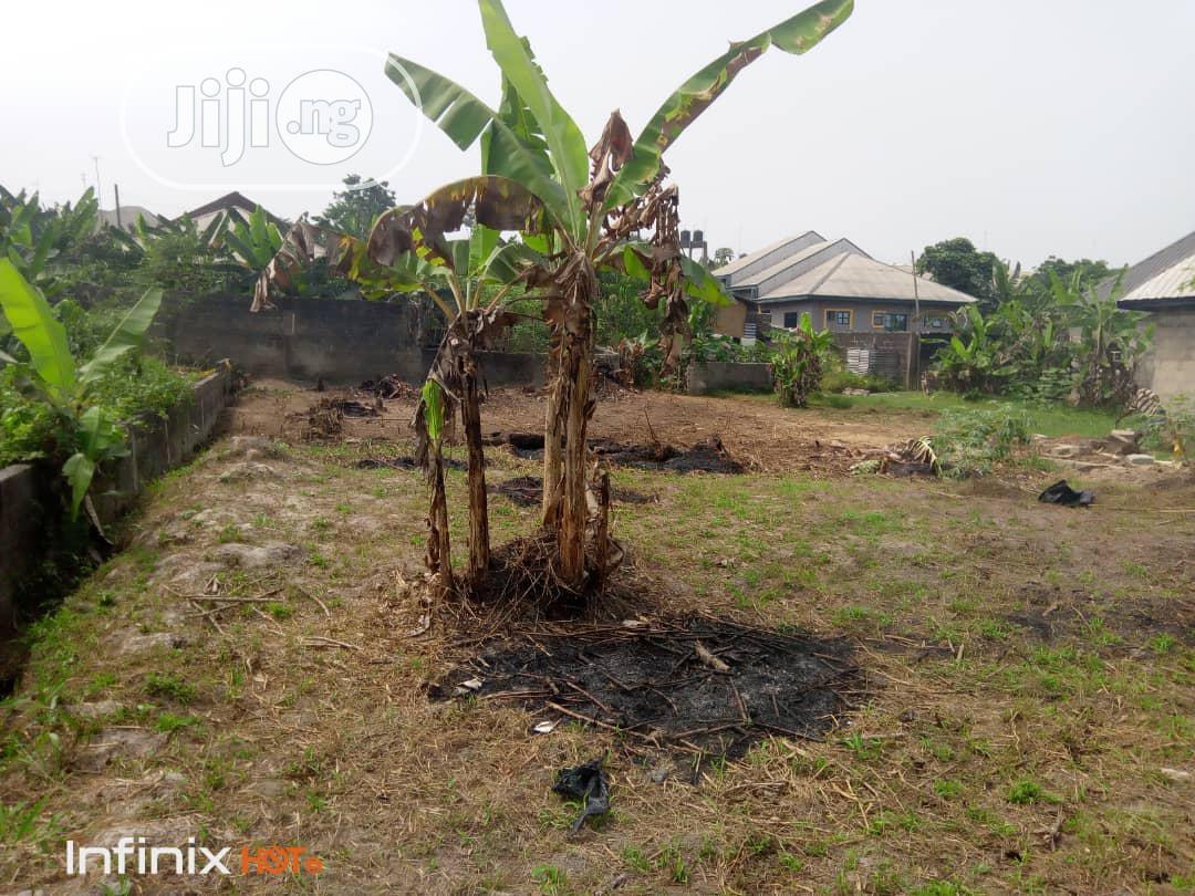 Archive: A Plot of Land at Afor Ojuju Umuebulu 1,