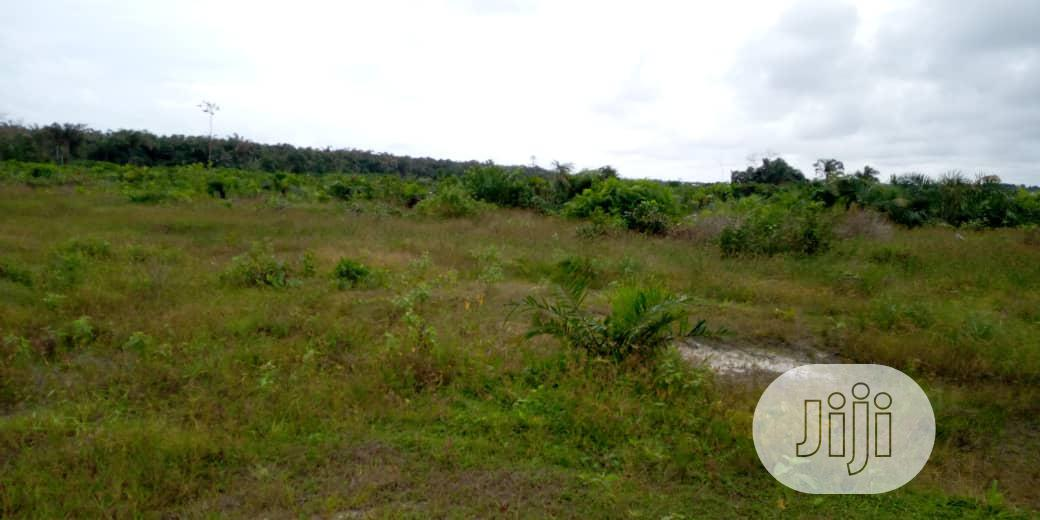 Plot Of Dry Land For Sale At Bojige | Land & Plots For Sale for sale in Ibeju, Lagos State, Nigeria