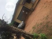 4bedroom Bungalow With Two Flats for Sale | Houses & Apartments For Sale for sale in Edo State, Benin City