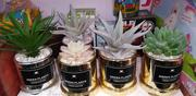 Cactus Leaf For Table Decor /Home Decor | Arts & Crafts for sale in Lagos State, Lagos Island