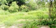 One (1)Acre Of Farmland, With Six(6) Standard Fish Pounds.   Farm Machinery & Equipment for sale in Ogun State, Odeda