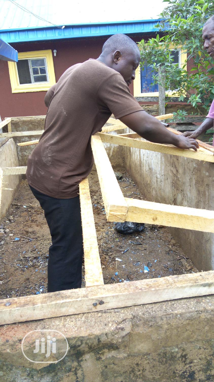 Practical Snail Farming In Nigeria | Classes & Courses for sale in Benin City, Edo State, Nigeria