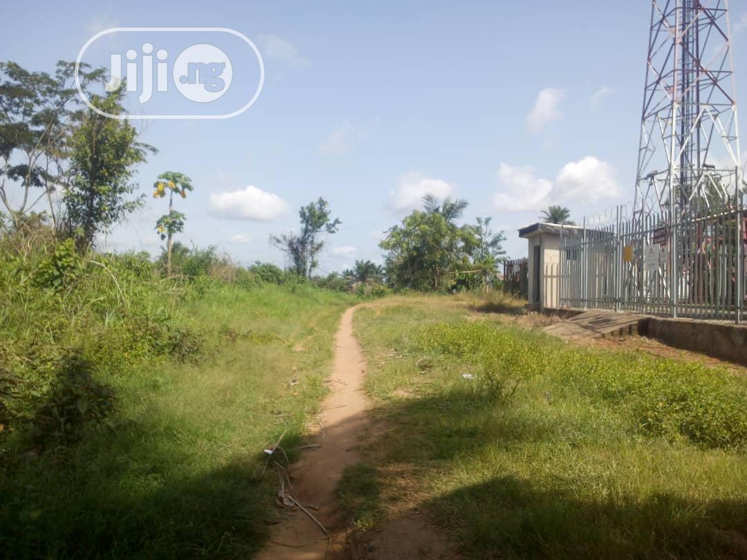 Archive: Plots In Abeokuta