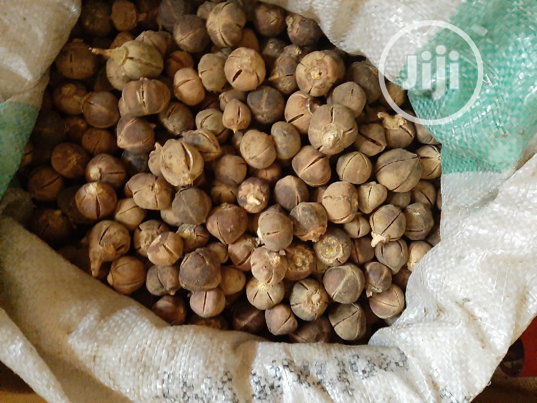 Goron Tula(Silky Kola Or Snot Apple)