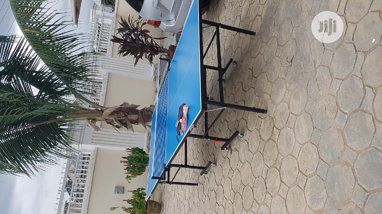 American Fitness Table Tennis Board Pro Lit