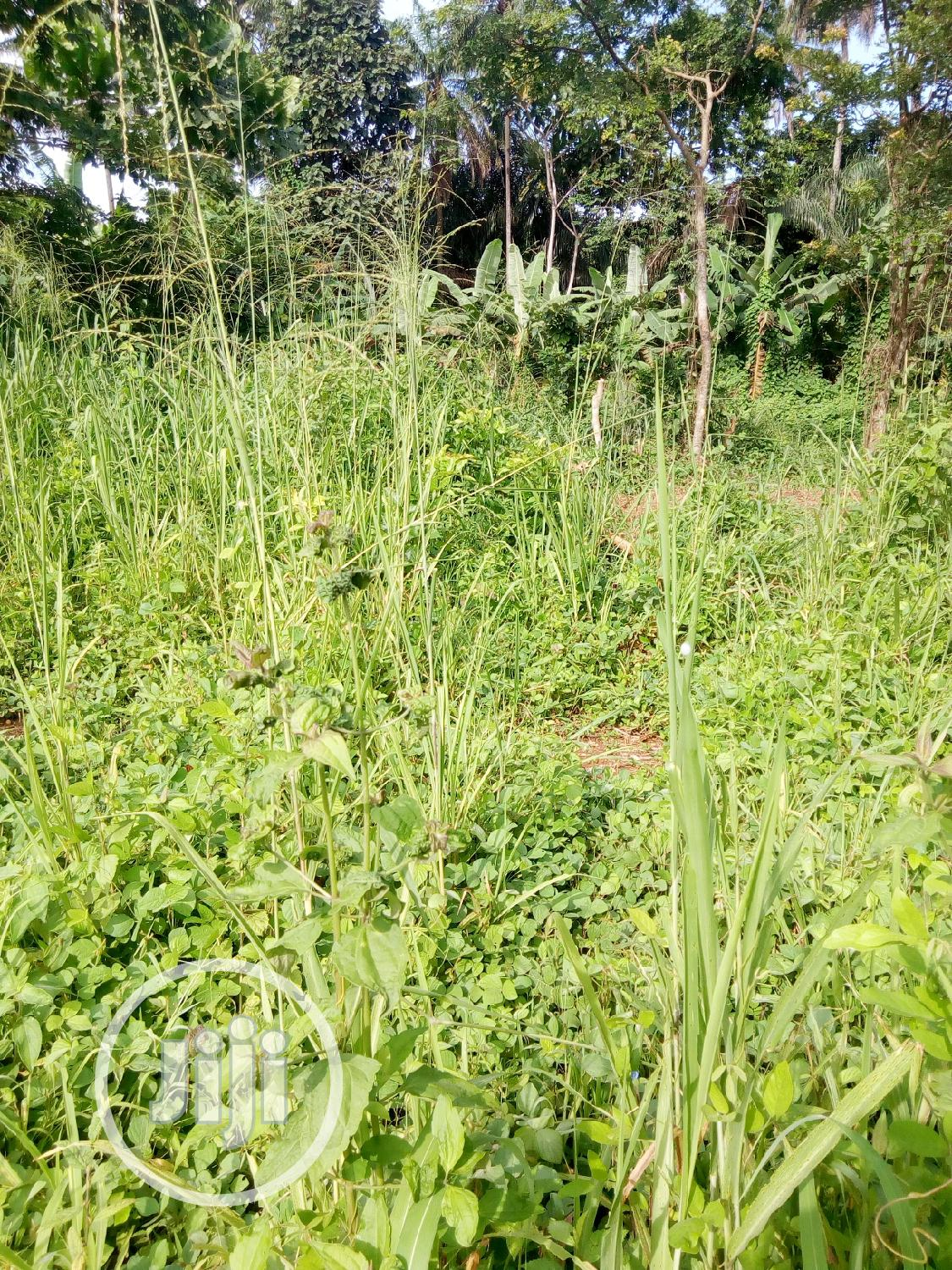 4 Plot Of Land For Sale